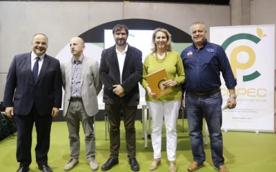 Valencia has the first Collective system of circular recycling for boxes of polyolefins for fruits and vegetables